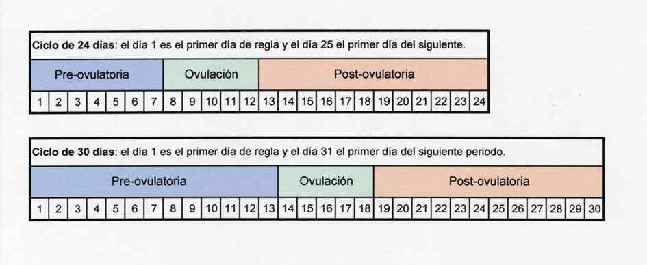 Dias Fertiles Mujer Calendario.Calculadora De Ovulacion Para Ser Padres